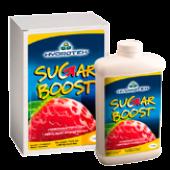 Sugar Boost