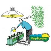 Veg Booster